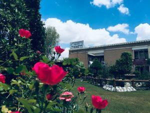 حدائق-الكلية